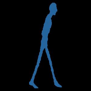 Logo fide formation